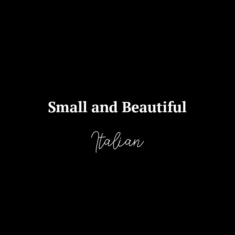 Small and Beautiful Logo
